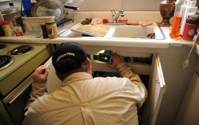 eliminar hormigas en la cocina sanite control de plagas